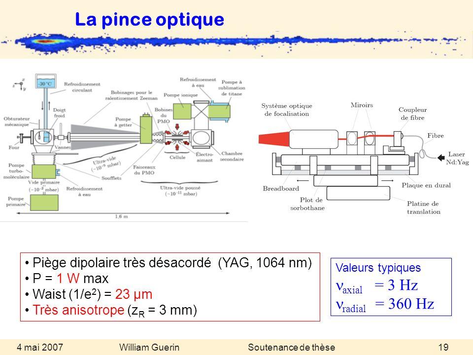 William Guerin 4 mai 2007Soutenance de thèse19 Valeurs typiques axial = 3 Hz radial = 360 Hz Piège dipolaire très désacordé (YAG, 1064 nm) P = 1 W max