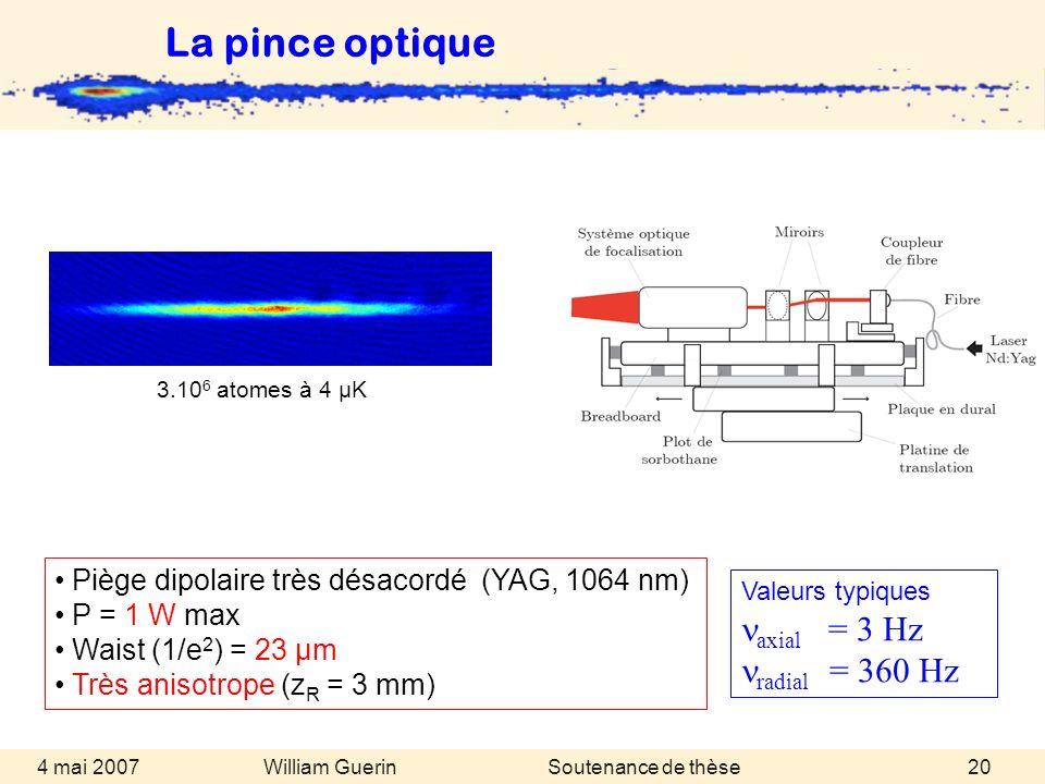 William Guerin 4 mai 2007Soutenance de thèse20 Valeurs typiques axial = 3 Hz radial = 360 Hz Piège dipolaire très désacordé (YAG, 1064 nm) P = 1 W max