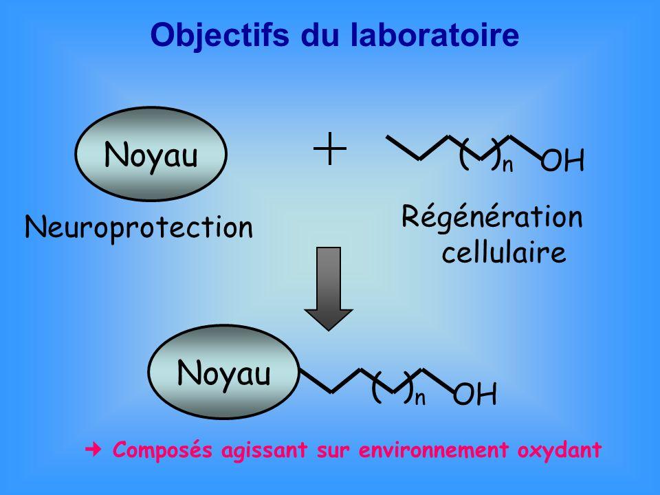 Objectifs du laboratoire Noyau OH ( ) n Neuroprotection Régénération cellulaire OH ( ) n Noyau Composés agissant sur environnement oxydant
