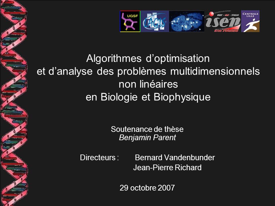 Soutenance de thèse Benjamin Parent Directeurs : Bernard Vandenbunder Jean-Pierre Richard 29 octobre 2007 Algorithmes doptimisation et danalyse des pr