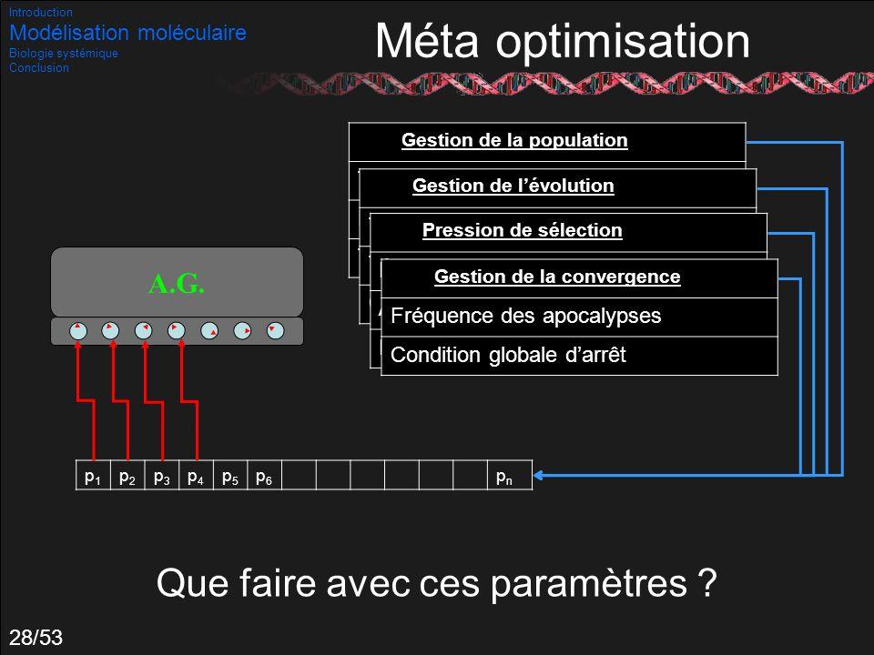 28/53 p1p1 p2p2 p3p3 p4p4 p5p5 p6p6 pnpn Gestion de la population Taille de population Nombre de processus parallèles Taux de migration Gestion de lév