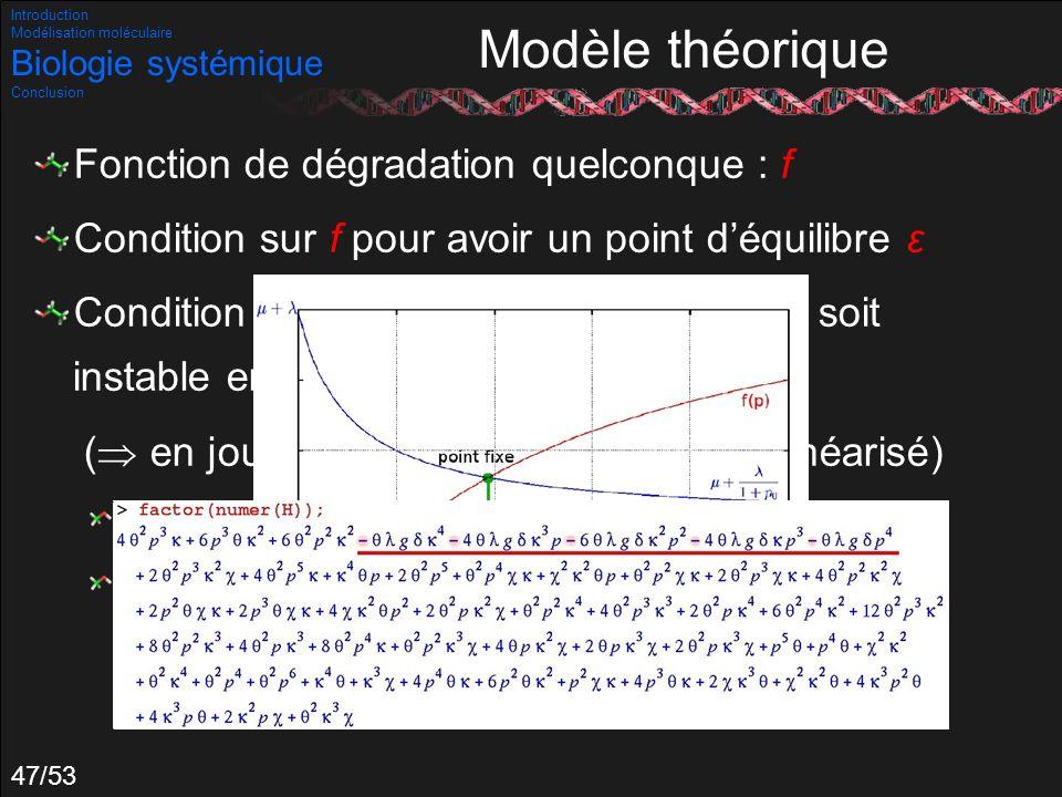 47/53 Modèle théorique Fonction de dégradation quelconque : f Condition sur f pour avoir un point déquilibre ε Condition sur les paramètres pour que ε