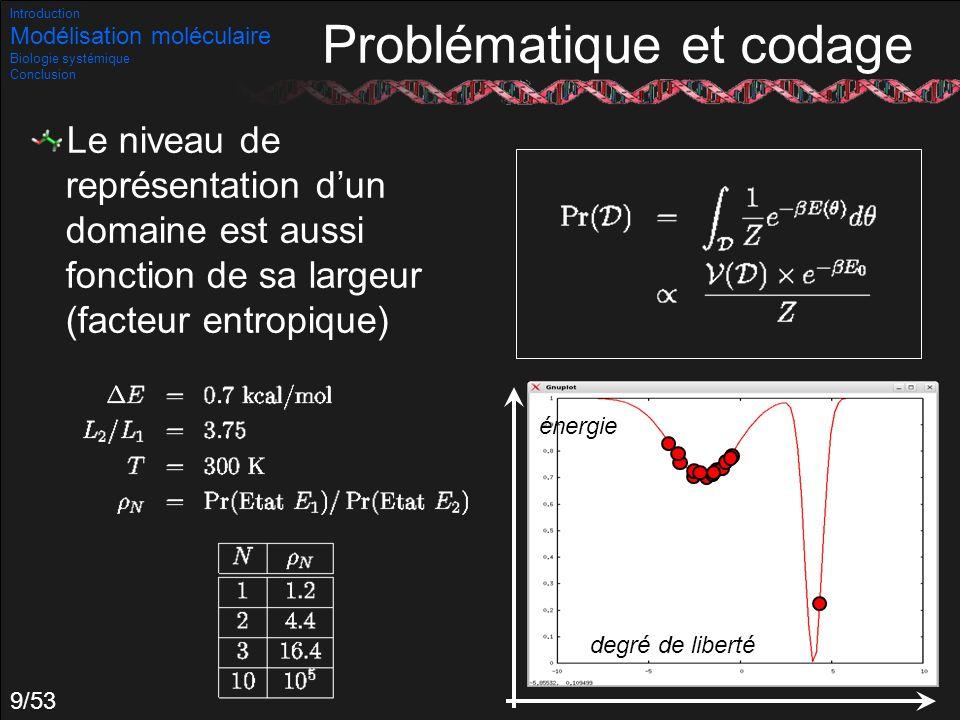 9/53 Le niveau de représentation dun domaine est aussi fonction de sa largeur (facteur entropique) Introduction Modélisation moléculaire Biologie syst