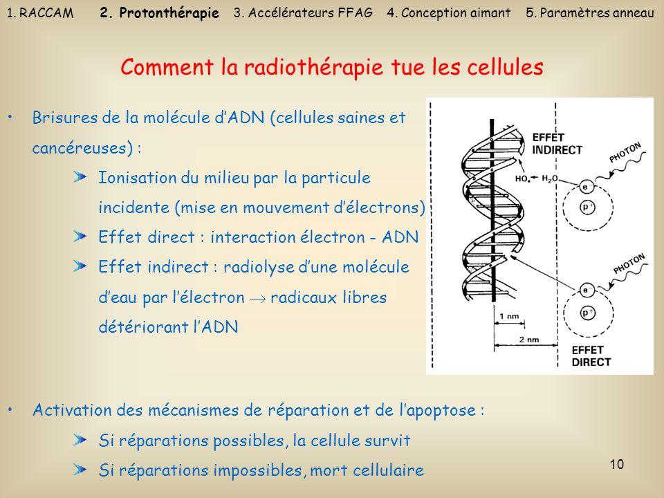 10 Comment la radiothérapie tue les cellules Brisures de la molécule dADN (cellules saines et cancéreuses) : Ionisation du milieu par la particule inc