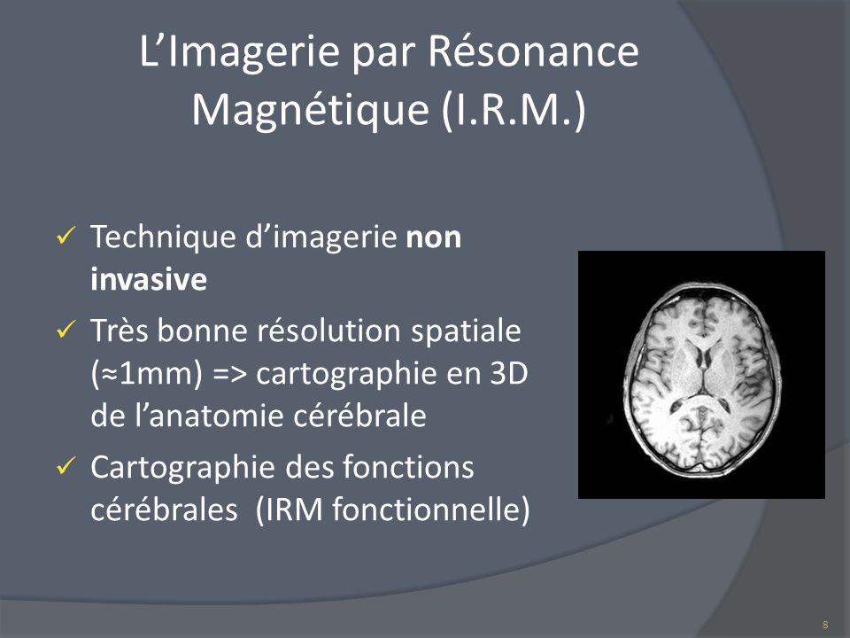 LImagerie par Résonance Magnétique (I.R.M.) Technique dimagerie non invasive Très bonne résolution spatiale (1mm) => cartographie en 3D de lanatomie c