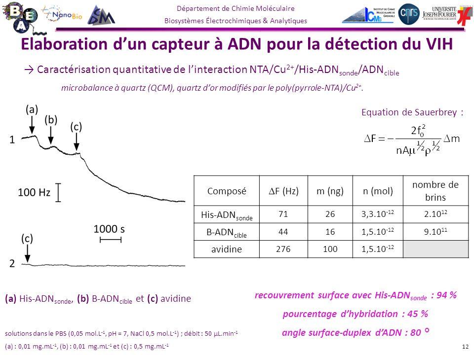 Département de Chimie Moléculaire Biosystèmes Électrochimiques & Analytiques Elaboration dun capteur à ADN pour la détection du VIH Caractérisation quantitative de linteraction NTA/Cu 2+ /His-ADN sonde /ADN cible microbalance à quartz (QCM), quartz dor modifiés par le poly(pyrrole-NTA)/Cu 2+.
