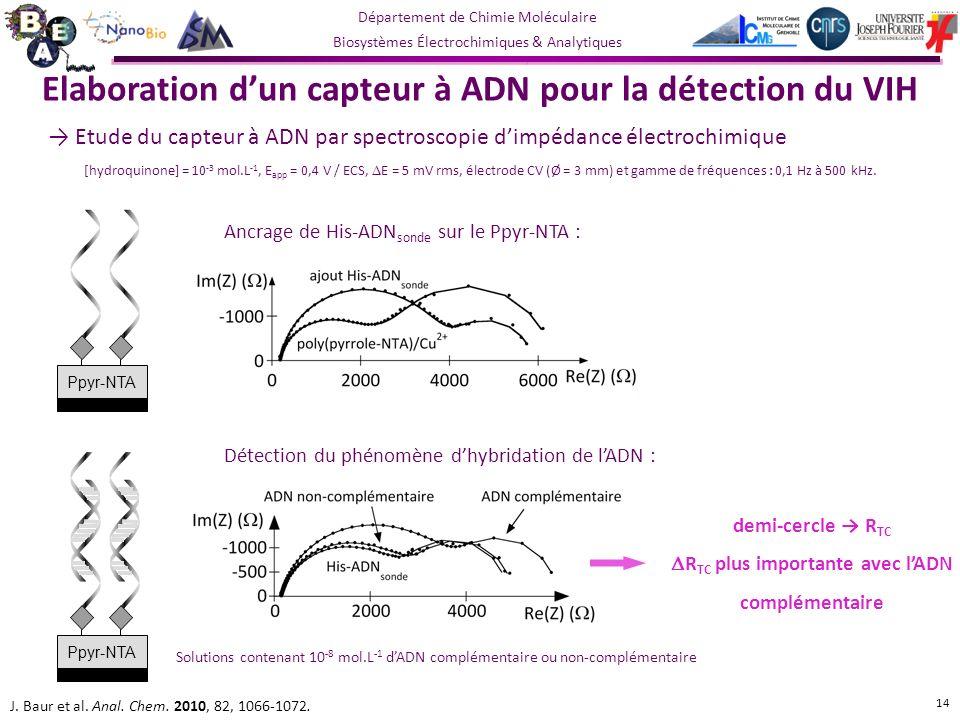 Département de Chimie Moléculaire Biosystèmes Électrochimiques & Analytiques Ancrage de His-ADN sonde sur le Ppyr-NTA : Détection du phénomène dhybridation de lADN : J.