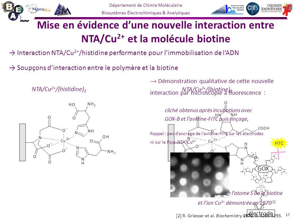 Département de Chimie Moléculaire Biosystèmes Électrochimiques & Analytiques Interaction NTA/Cu 2+ /histidine performante pour limmobilisation de lADN Soupçons dinteraction entre le polymère et la biotine Mise en évidence dune nouvelle interaction entre NTA/Cu 2+ et la molécule biotine 17 NTA/Cu 2+ /(histidine) 2 NTA/Cu 2+ /(biotine) 2 [2] R.