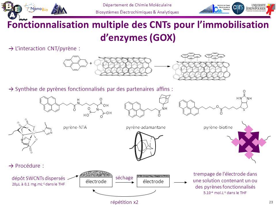 Département de Chimie Moléculaire Biosystèmes Électrochimiques & Analytiques Linteraction CNT/pyrène : Synthèse de pyrènes fonctionnalisés par des partenaires affins : Fonctionnalisation multiple des CNTs pour limmobilisation denzymes (GOX) 23 dépôt SWCNTs dispersés 20µL à 0,1 mg.mL -1 dans le THF séchage électrode répétition x2 Procédure : trempage de lélectrode dans une solution contenant un ou des pyrènes fonctionnalisés 5.10 -4 mol.L -1 dans le THF