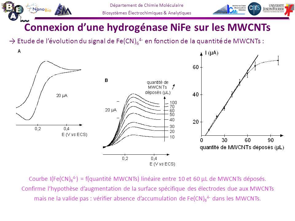 Département de Chimie Moléculaire Biosystèmes Électrochimiques & Analytiques Connexion dune hydrogénase NiFe sur les MWCNTs Etude de lévolution du signal de Fe(CN) 6 4- en fonction de la quantité de MWCNTs : Courbe I(Fe(CN) 6 4- ) = f(quantité MWCNTs) linéaire entre 10 et 60 µL de MWCNTs déposés.