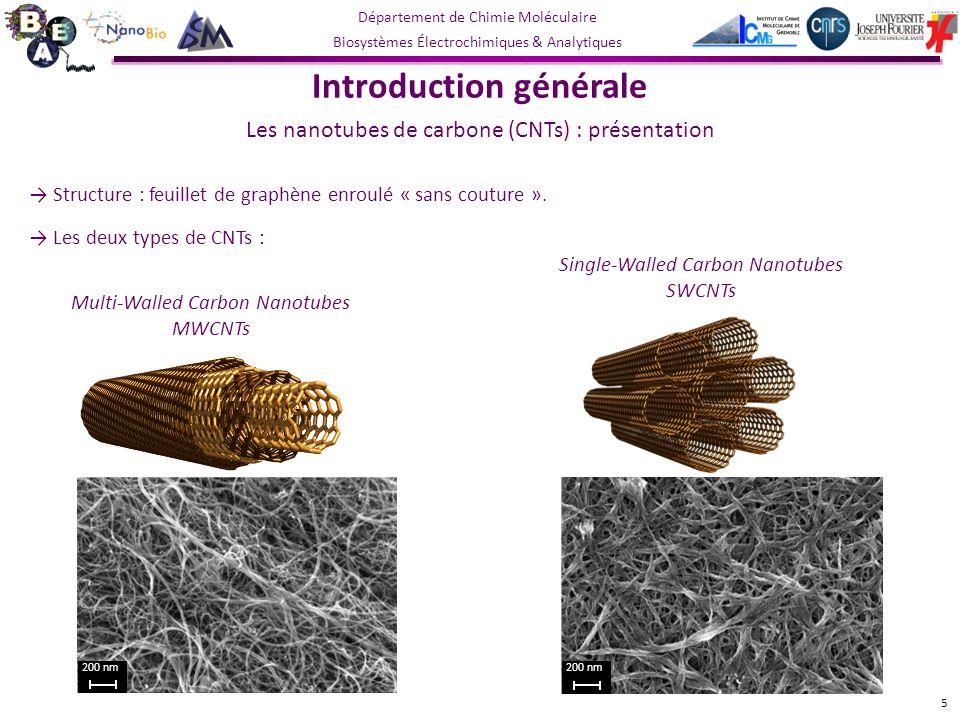 Département de Chimie Moléculaire Biosystèmes Électrochimiques & Analytiques Structure : feuillet de graphène enroulé « sans couture ».