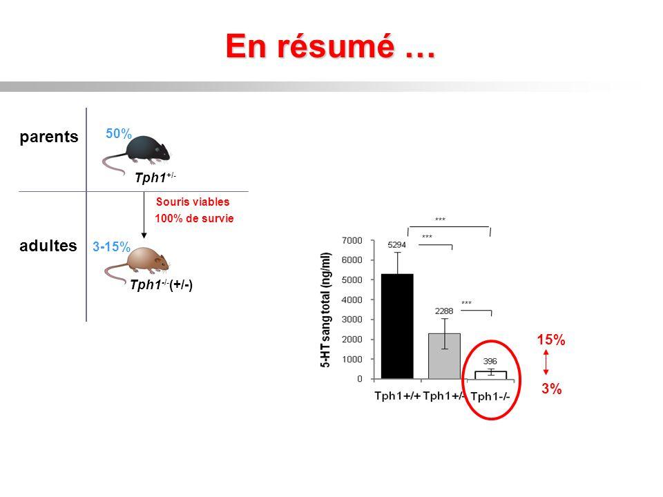 En résumé … parents adultes 100% de survie Souris viables Tph1 -/- (+/-) 3-15% 50% Tph1 +/- *** 3% 15%