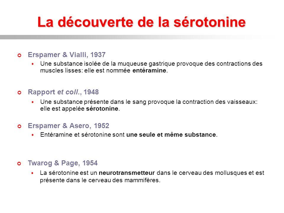 La découverte de la sérotonine Erspamer & Vialli, 1937 Une substance isolée de la muqueuse gastrique provoque des contractions des muscles lisses: ell