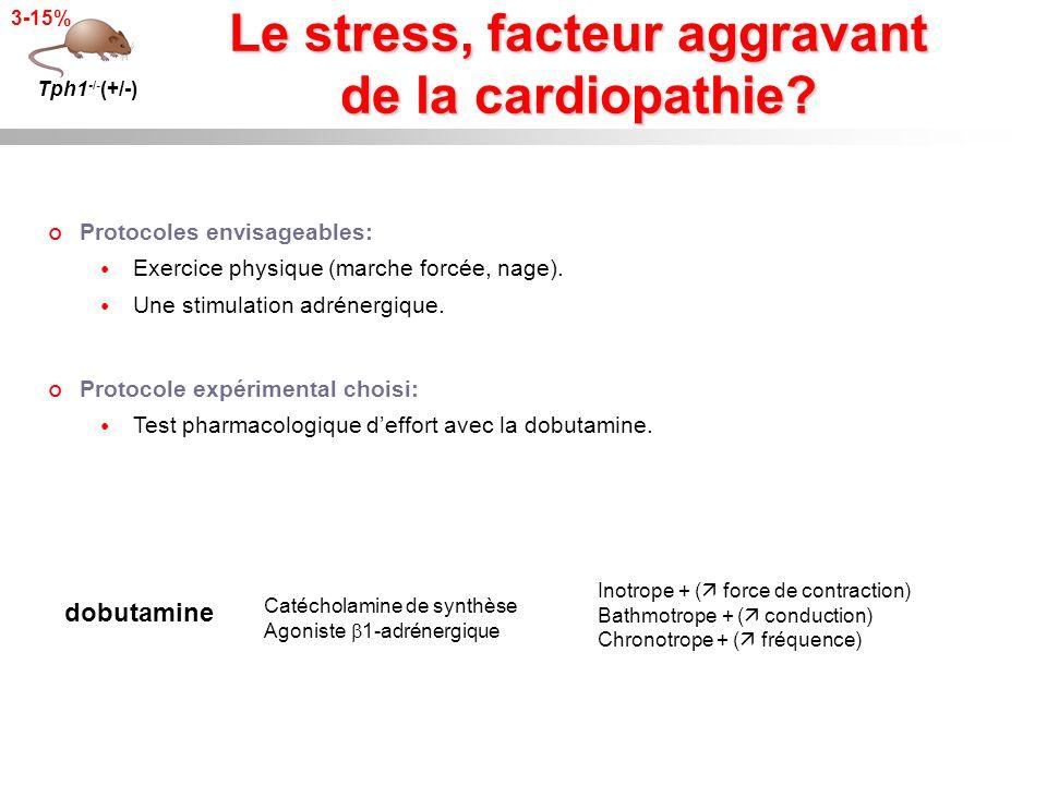 Le stress, facteur aggravant de la cardiopathie? Tph1 -/- (+/-) 3-15% Protocoles envisageables: Exercice physique (marche forcée, nage). Une stimulati