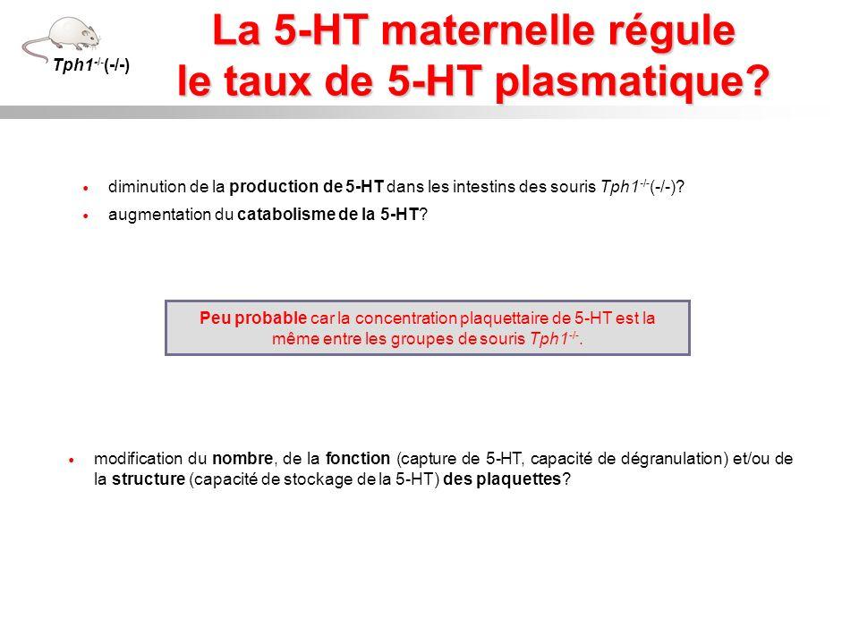 diminution de la production de 5-HT dans les intestins des souris Tph1 -/- (-/-)? augmentation du catabolisme de la 5-HT? Peu probable car la concentr
