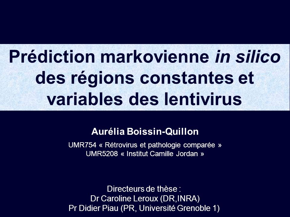 Performance des modèles Lentivirus % dacides aminés bien étiquetés EIAV96 HIV-194 SIV89 SRLV96