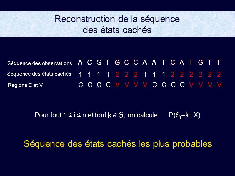 Reconstruction de la séquence des états cachés Séquence des états cachés les plus probables Pour tout 1 i n et tout k Є S, on calcule : P(S i =k | X) ACGTGCCTAAATCTTG CCCCVVVCCVCVCVVV ACGTGCCTAAATCTTG 1111222111222222 Séquence des observations Séquence des états cachés Régions C et V