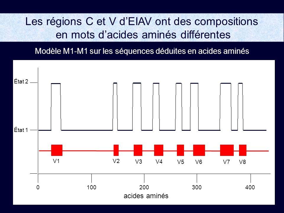 1002004000300 État 2 État 1 acides aminés V5 V1V2 V6V7V8 V3 V4 Les régions C et V dEIAV ont des compositions en mots dacides aminés différentes Modèle M1-M1 sur les séquences déduites en acides aminés