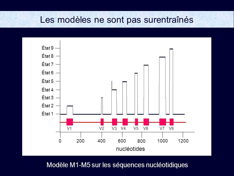 Les modèles ne sont pas surentraînés V5V1V2V6V7 V8 V3 V4 État 5 État 8 État 9 État 6 État 7 État 3 État 4 État 2 État 1 200400 800 10001200600 0 Modèle M1-M5 sur les séquences nucléotidiques nucléotides