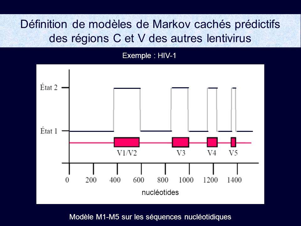Définition de modèles de Markov cachés prédictifs des régions C et V des autres lentivirus Exemple : HIV-1 Modèle M1-M5 sur les séquences nucléotidiques nucléotides
