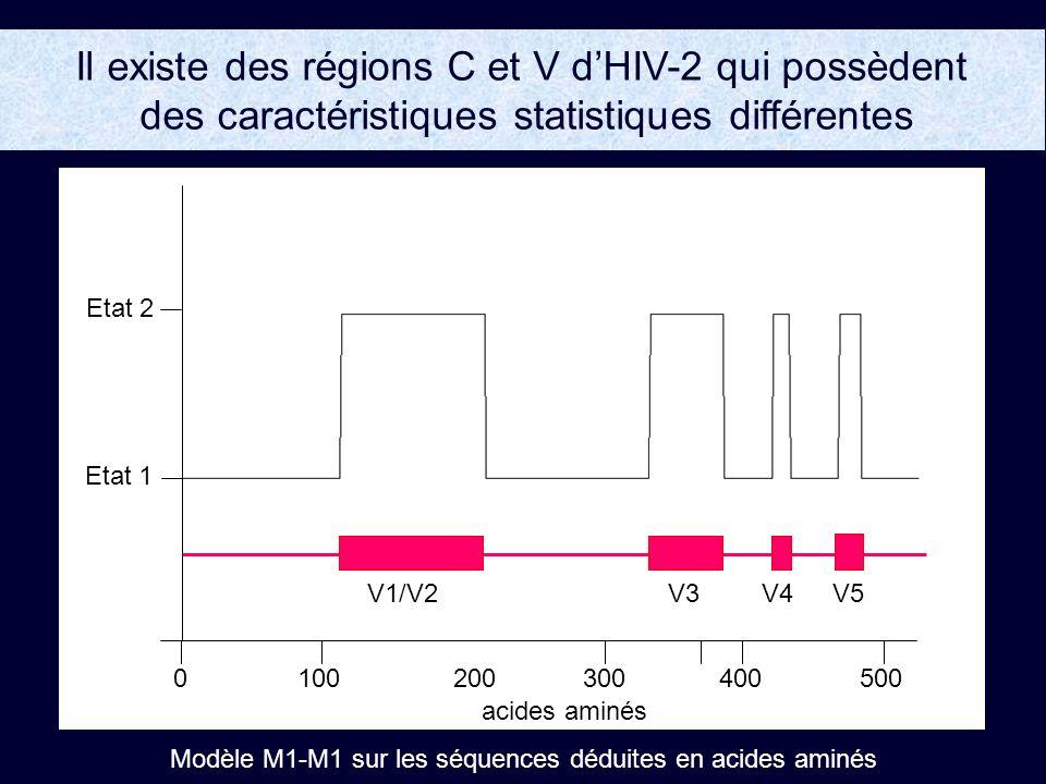 Il existe des régions C et V dHIV-2 qui possèdent des caractéristiques statistiques différentes 0100200300400500 Etat 1 Etat 2 acides aminés Modèle M1-M1 sur les séquences déduites en acides aminés V1/V2V3V4V5