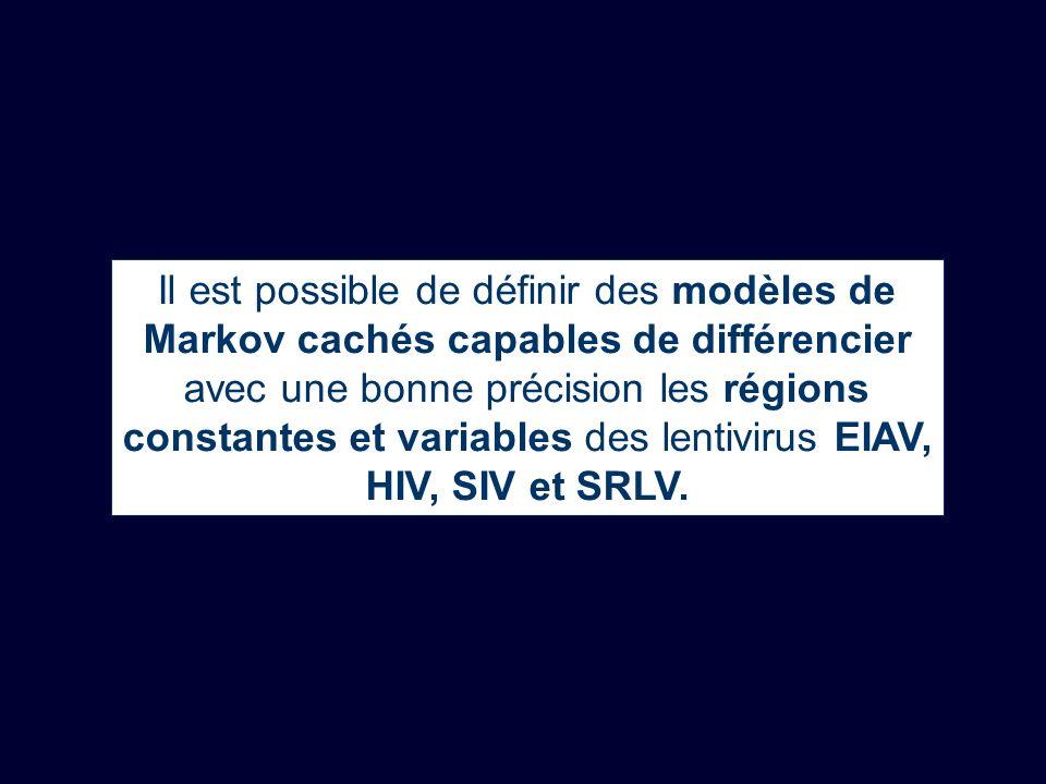 Il est possible de définir des modèles de Markov cachés capables de différencier avec une bonne précision les régions constantes et variables des lentivirus EIAV, HIV, SIV et SRLV.