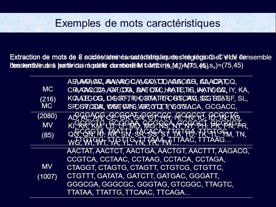 Exemples de mots caractéristiques Extraction de mots de 2 acides aminés caractéristiques des régions C et V de lensemble des lentivirus à partir du modèle combiné M1-M1 : (s c,s v )=(75,45) MC (216) AE, AG, AV, AW, AY, CA, CC, CD, CG, CH, CL, CP, CQ, CR, CW, DA, DF, DG, DH, DM, HY, IE, IF, IH, IV, IW, IY, KA, KC, LE, LG, LH, RF, RH, RM, RR, RS, RV, SC, SE, SF, SL, SP, SV, SW, WM, WN, WP, YQ, YV, YY… MV (85) AD, AL, AN, CE, GK, GN, GT, HH, HI, HV, IC, ID, IN, KG, KI, KK, KM, LD, LF, MD, MG, NS, NT, NY, PH, PK, PN, PR, QG, QN, RI, RK, SN, SR, SS, ST, TA, TD, TK, TL, TM, TN, WG, WI, WT, YA, YL, YN, YR, YW… Extraction de mots de 6 nucléotides caractéristiques des régions C et V de lensemble des lentivirus à partir du modèle combiné M1-M5 : (s c,s v )=(75,45) MC (2080) AAAACC, AAAAGC, AAAATT, AAACAG, AAACAT, AAACCC, AATCTA, AATCTC, AATCTG, AATGCC, AATGCG, CGGTTT, CGTATT, CGTCAG, CGTCAT, CGTCCA, CGTCTG, GCCTTT, GCGACA, GCGACC, GCGACG, GCGCAT, GCGCCC, GCGCCT, GCGCTC, GCGCTG, GCGGAA, GCGGCA, GCGGCT, GCGGGT, GCGGTA, TAATTT, TACACA, TTGTGA, TTGTGC, TTGTGG, TTGTTG, TTTAAA, TTTAAC, TTTAAG… MV (1007) AACTAT, AACTCT, AACTGA, AACTGT, AACTTT, AAGACG, CCGTCA, CCTAAC, CCTAAG, CCTACA, CCTAGA, CTAGGT, CTAGTG, CTAGTT, CTGTCG, CTGTTC, CTGTTT, GATATA, GATCTT, GATGAC, GGGATT, GGGCGA, GGGCGC, GGGTAG, GTCGGC, TTAGTC, TTATAA, TTATTG, TTCAAC, TTCAGA...