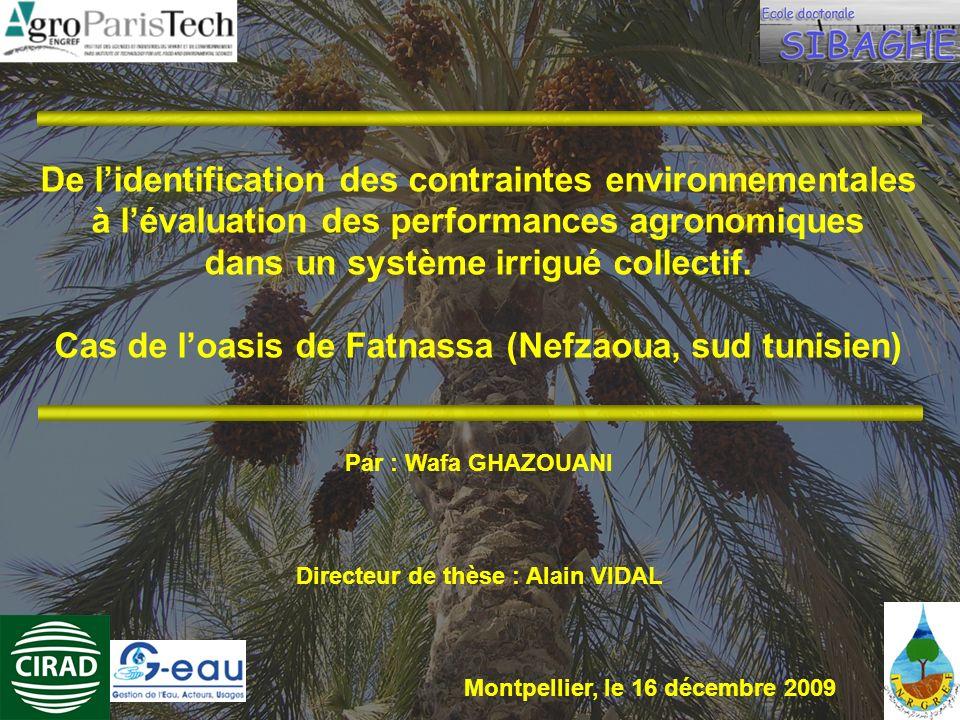 De lidentification des contraintes environnementales à lévaluation des performances agronomiques dans un système irrigué collectif. Cas de loasis de F