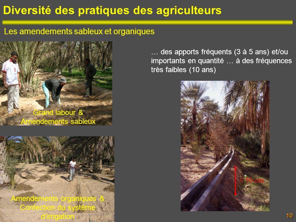 Diversité des pratiques des agriculteurs Les amendements sableux et organiques Grand labour & Amendements sableux 50 cm Amendements organiques & Confe