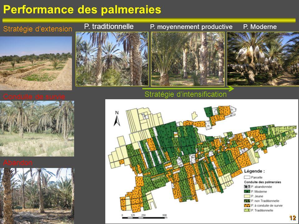 12 Performance des palmeraies Stratégie dextension Conduite de survie Abandon Stratégie dintensification P. traditionnelle P. moyennement productive P