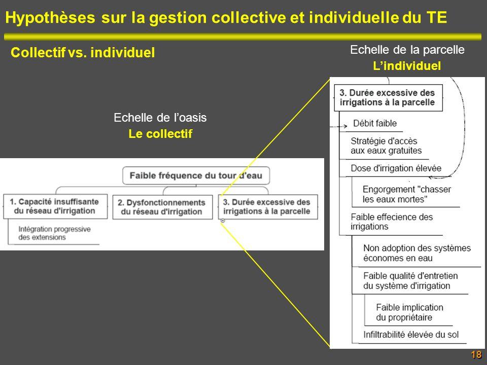 Hypothèses sur la gestion collective et individuelle du TE Collectif vs. individuel Echelle de loasis Le collectif Echelle de la parcelle Lindividuel1