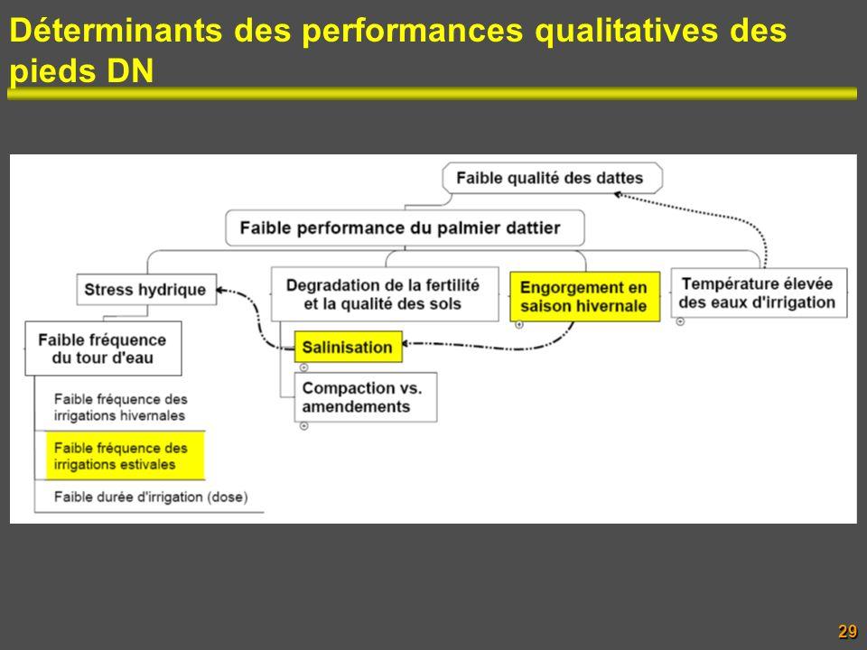 Déterminants des performances qualitatives des pieds DN 29