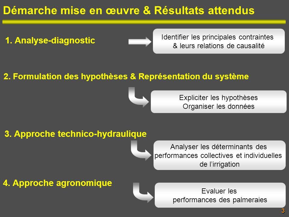 Démarche mise en œuvre & Résultats attendus Identifier les principales contraintes & leurs relations de causalité Analyser les déterminants des perfor