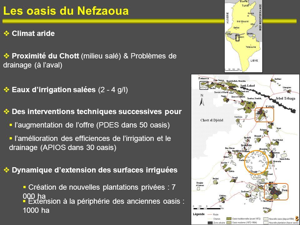 Les oasis du Nefzaoua Climat aride Proximité du Chott (milieu salé) & Problèmes de drainage (à laval) Eaux dirrigation salées (2 - 4 g/l) Des interven