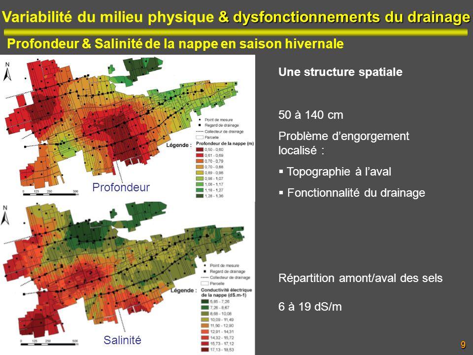 & dysfonctionnements du drainage Variabilité du milieu physique & dysfonctionnements du drainage Profondeur & Salinité de la nappe en saison hivernale