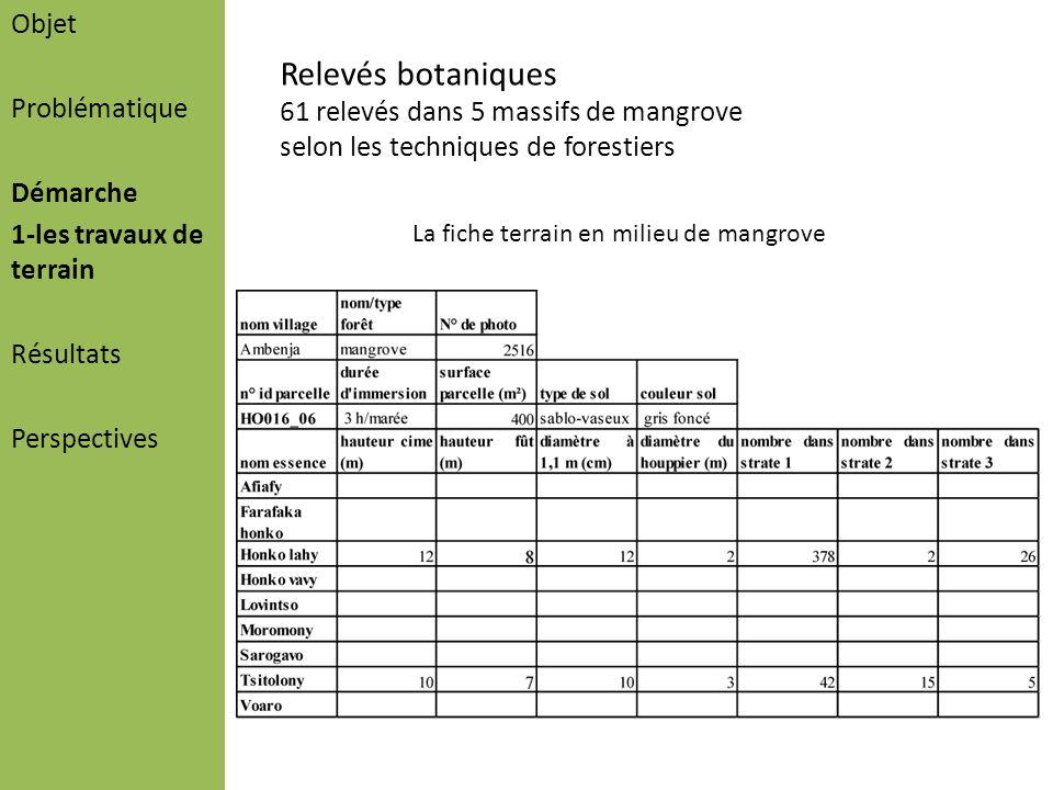 Objet Problématique Démarche 1-les travaux de terrain Résultats Perspectives Relevés botaniques 61 relevés dans 5 massifs de mangrove selon les techni