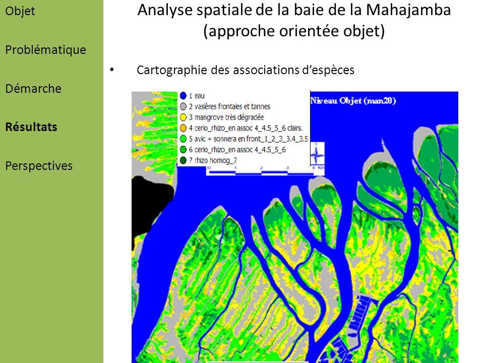 Analyse spatiale de la baie de la Mahajamba (approche orientée objet) Cartographie des associations despèces Objet Problématique Démarche Résultats Pe
