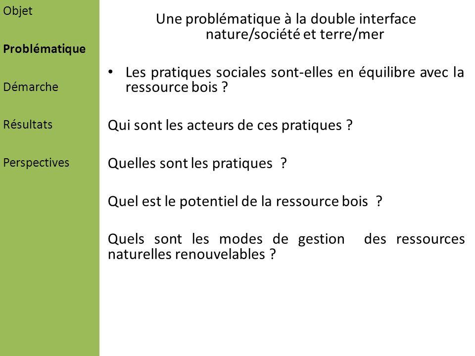 Une problématique à la double interface nature/société et terre/mer Les pratiques sociales sont-elles en équilibre avec la ressource bois ? Qui sont l