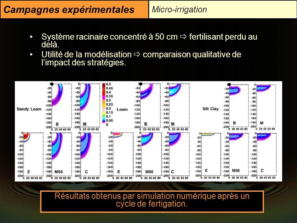 Campagnes expérimentales Micro-irrigation Système racinaire concentré à 50 cm fertilisant perdu au delà. Utilité de la modélisation comparaison qualit