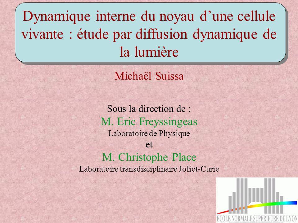 Dynamique interne du noyau dune cellule vivante : étude par diffusion dynamique de la lumière Michaël Suissa Sous la direction de : M. Eric Freyssinge