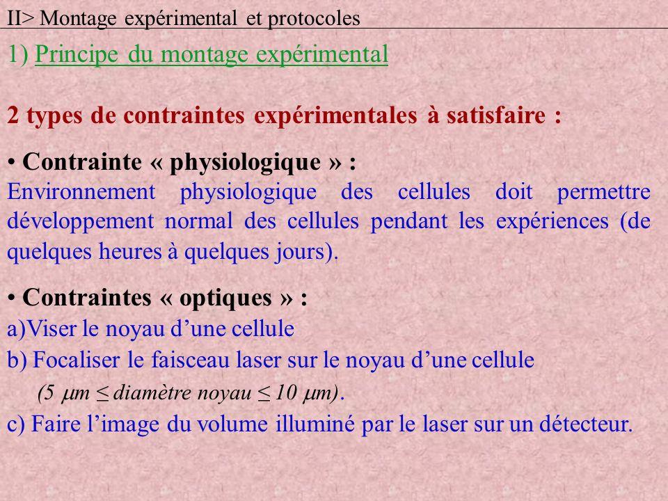 2 types de contraintes expérimentales à satisfaire : Contrainte « physiologique » : Environnement physiologique des cellules doit permettre développem