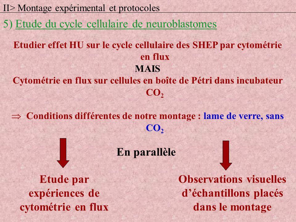 Etudier effet HU sur le cycle cellulaire des SHEP par cytométrie en flux MAIS Cytométrie en flux sur cellules en boîte de Pétri dans incubateur CO 2 C