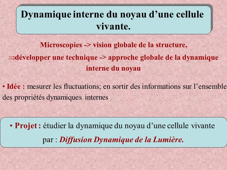 Microscopies -> vision globale de la structure, développer une technique -> approche globale de la dynamique interne du noyau Dynamique interne du noy