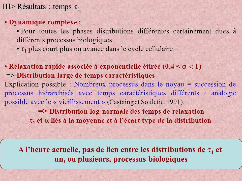 Dynamique complexe : Pour toutes les phases distributions différentes certainement dues à différents processus biologiques. 1 plus court plus on avanc