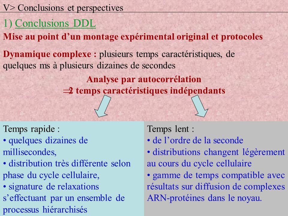 1) Conclusions DDL V> Conclusions et perspectives Mise au point dun montage expérimental original et protocoles Dynamique complexe : plusieurs temps c