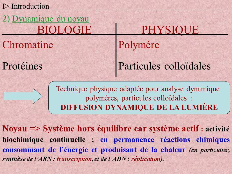 I> Introduction 2) Dynamique du noyau BIOLOGIEPHYSIQUE ChromatinePolymère ProtéinesParticules colloïdales Noyau => Système hors équilibre car système