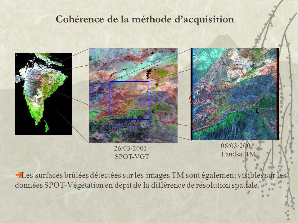26/03/2001 : SPOT-VGT 06/03/2001 : Landsat TM Les surfaces brûlées détectées sur les images TM sont également visibles sur les données SPOT-Végétation