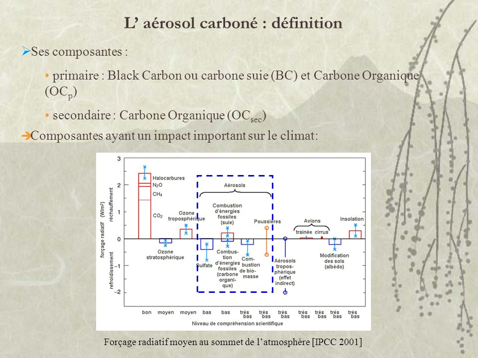 L aérosol carboné : définition Ses composantes : primaire : Black Carbon ou carbone suie (BC) et Carbone Organique (OC p ) secondaire : Carbone Organi