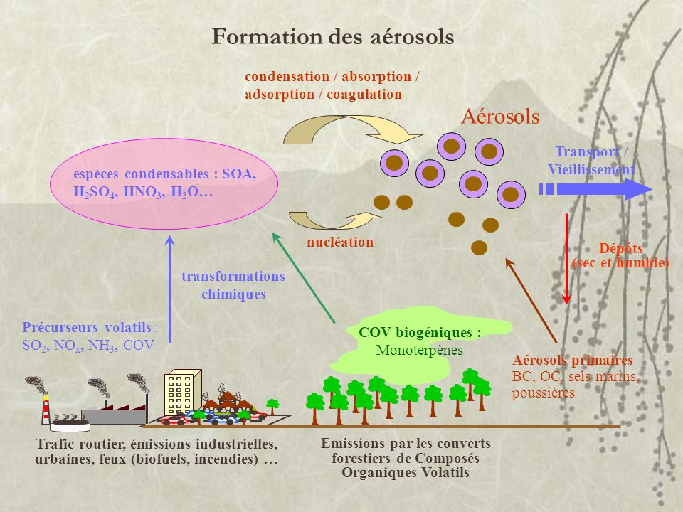 Formation des aérosols espèces condensables : SOA, H 2 SO 4, HNO 3, H 2 O… transformations chimiques Précurseurs volatils : SO 2, NO x, NH 3, COV Traf