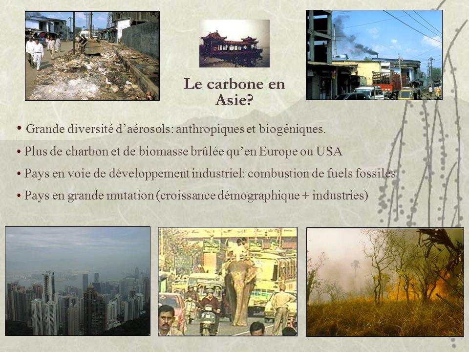 Le carbone en Asie? Grande diversité daérosols: anthropiques et biogéniques. Plus de charbon et de biomasse brûlée quen Europe ou USA Pays en voie de